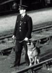 Birmingham Dog 1966.jpg